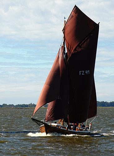 FZ41 Seriola, Volker Gries, Bodstedt 2012 , 09/2012