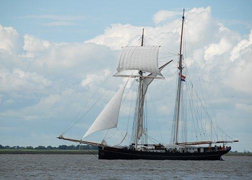 Wylde Swan, Volker Gries, Sail Bremerhaven 2010 , 08/2010
