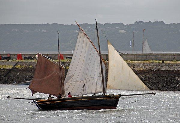 Rose of Argyll, Volker Gries, Les Tonnerres de Brest 2012 , 07/2012