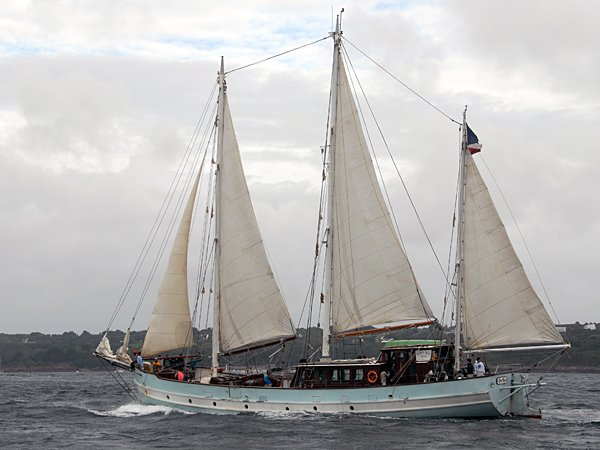 Rara Avis, Volker Gries, Les Tonnerres de Brest 2012 , 07/2012
