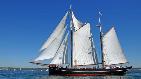 Iris, Volker Gries, Sail Brest 2016 , 07/2016