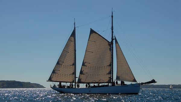 Saltillo, Volker Gries, Sail Brest 2016 , 07/2016