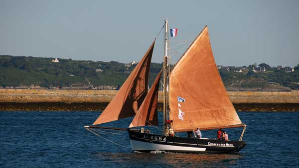 Corbeau des Mers AY1684, Volker Gries, Sail Brest 2016 , 07/2016
