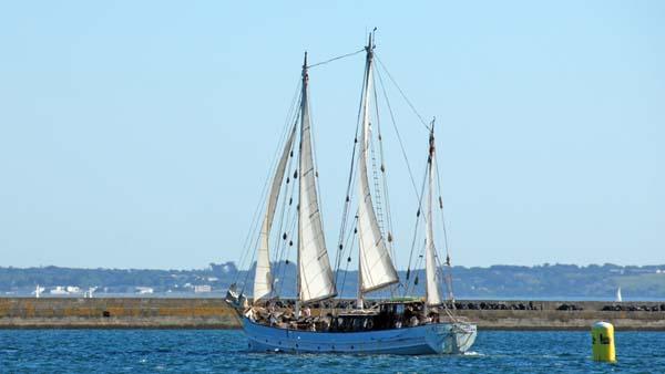 Rara Avis, Volker Gries, Sail Brest 2016 , 07/2016