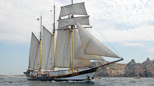 Swaensborgh, Volker Gries, Sail Brest 2016 , 07/2016