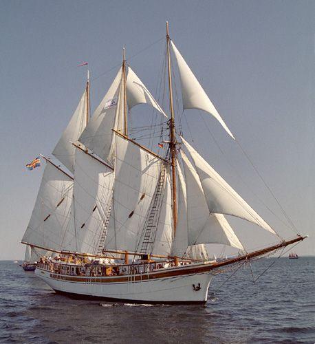 Linden, Volker Gries, Hanse Sail Rostock 2004 , 08/2004