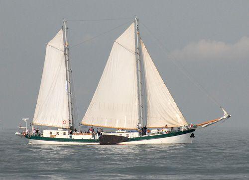 Elegant, Volker Gries, Hanse Sail Rostock 2006 , 08/2006