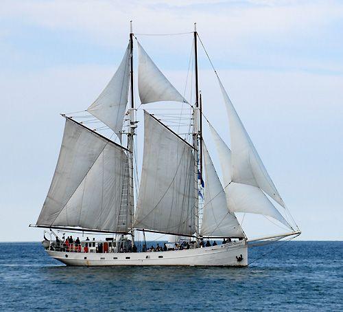 Joanna Saturna, Volker Gries, Hanse Sail Rostock 2006 , 08/2006