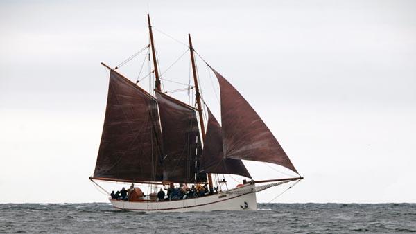 Phoenix, Volker Gries, Hanse Sail Rostock 2017 , 08/2017