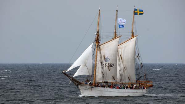 Ingo, Volker Gries, Hanse Sail Rostock 2017 , 08/2017
