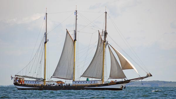 Swaensborgh, Volker Gries, Hanse Sail Rostock 2018 , 08/2018