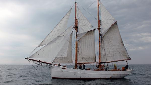 Nordwind, Volker Gries, Haikutter Regatta 2019 , 08/2019