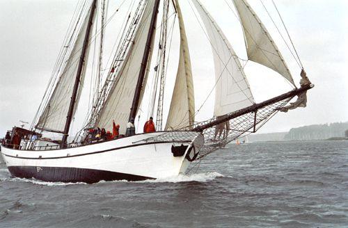 Bisschop van Arkel, Volker Gries, Rum-Regatta 2004 , 05/2004