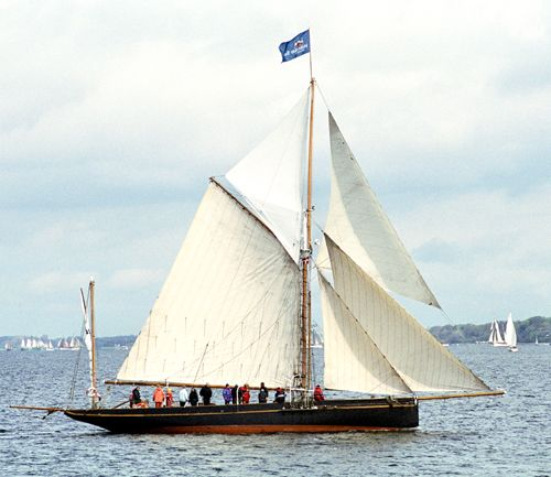 Willow Wren, Volker Gries, Rum-Regatta 2005 , 05/2005