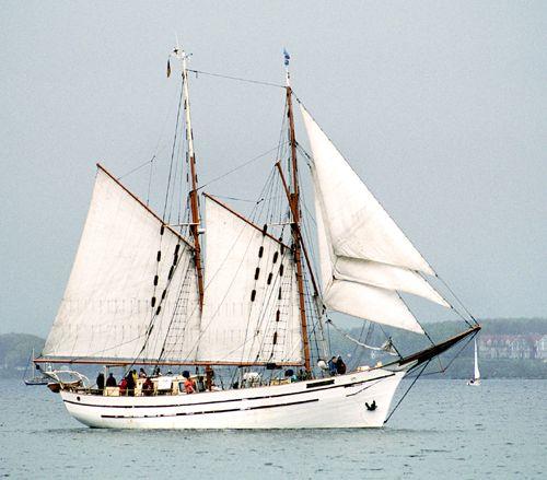 Freedom, Volker Gries, Rum-Regatta 2005 , 05/2005