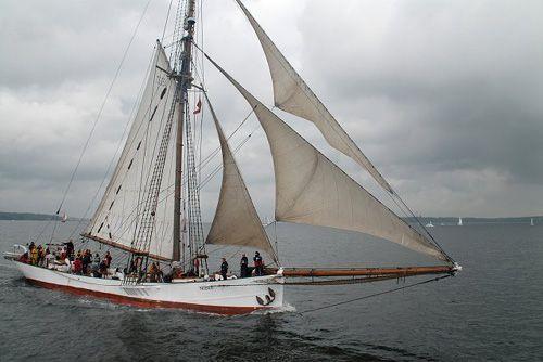 Nobile, Volker Gries, Rum-Regatta 2006 , 05/2006
