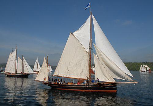 Willow Wren, Volker Gries, Rum-Regatta 2008 , 05/2008