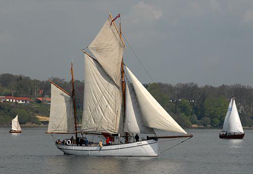 Bellis, Volker Gries, Rum-Regatta 2008 , 05/2008