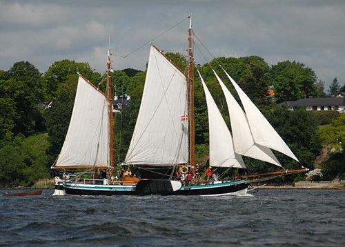 Wilhelmine, Volker Gries, Rum-Regatta 2009 , 05/2009