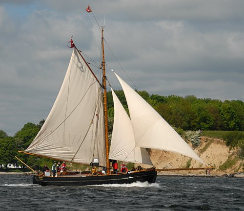 Viking, Volker Gries, Rum-Regatta 2009 , 05/2009