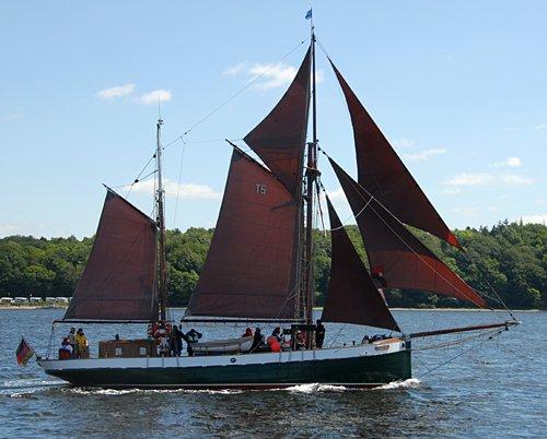 Sampo, Volker Gries, Rum-Regatta 2009 , 05/2009