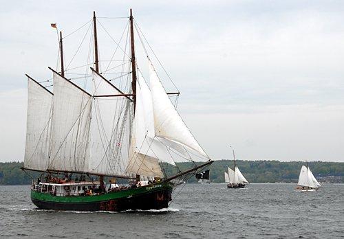 Pippilotta, Volker Gries, Rum-Regatta 2010 , 05/2010