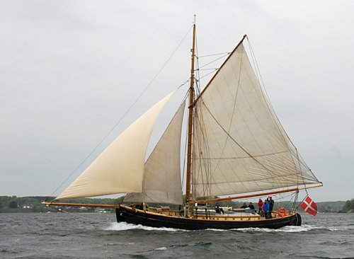 Viking, Volker Gries, Rum-Regatta 2010 , 05/2010