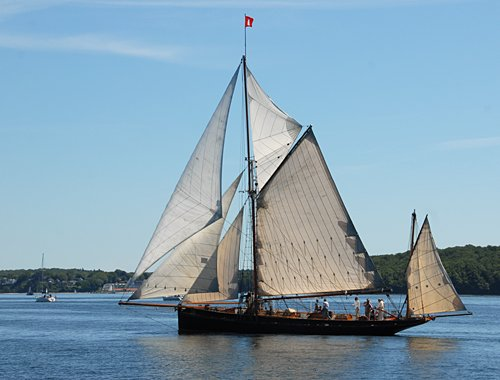 Willow Wren, Volker Gries, Rum-Regatta 2011 , 06/2011