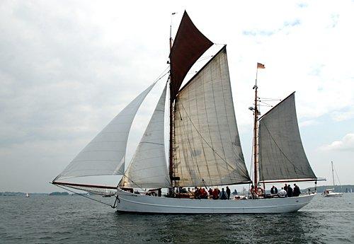 Pirola, Volker Gries, Rum-Regatta 2012 , 05/2012