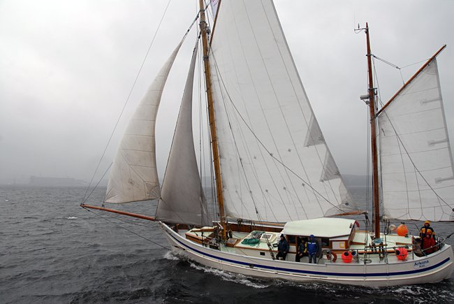 Arkona, Volker Gries, Rum-Regatta 2015 , 05/2015
