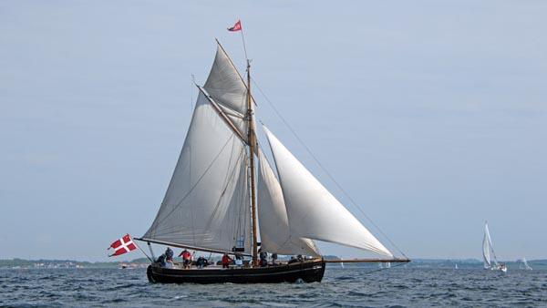 Viking, Volker Gries, Rum-Regatta 2018 , 05/2018