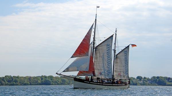 Sæløer, Volker Gries, Rum-Regatta 2018 , 05/2018