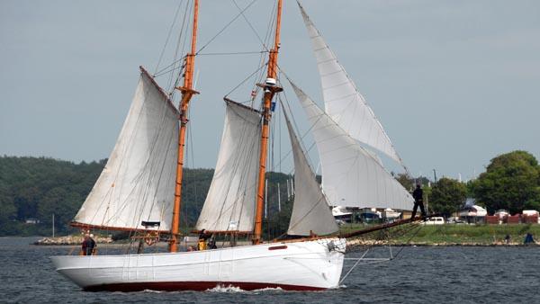 Nordwind, Volker Gries, Rum-Regatta 2019 , 05/2019