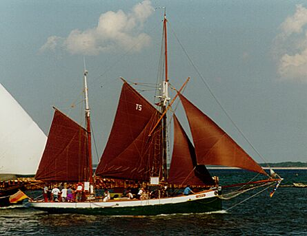 Sampo, Volker Gries, Hanse Sail Rostock 1997 , 08/1997