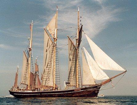 Albatros, Werner Jurkowski, Rostock , 07/1991