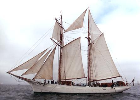 Étoile, Volker Gries, Sail Brest / Cutty Sark 2002 , 07/2002
