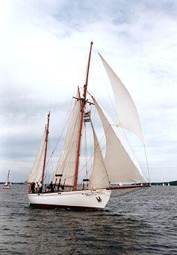 Wyvern af Aalesund, Volker Gries, Rum-Regatta 2001 , 05/2001