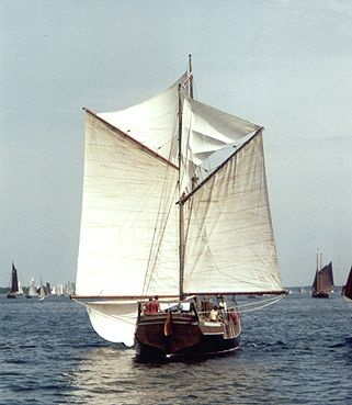 Oline, Volker Gries, Rum-Regatta 2001 , 05/2001