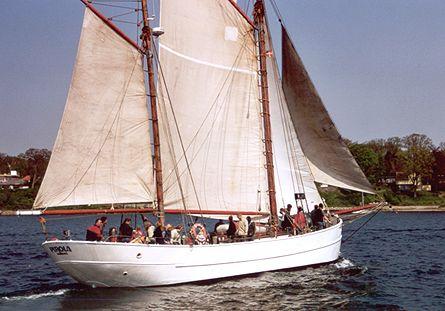 Pirola, Volker Gries, Rum-Regatta 2002 , 05/2002