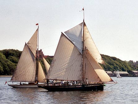 Willow Wren, Volker Gries, Rum-Regatta 2003 , 05/2003