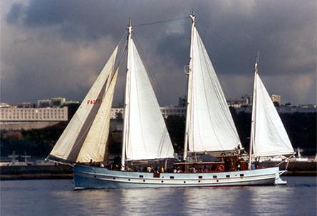 Rara Avis, Volker Gries, Sail Brest / Cutty Sark 2002 , 07/2002
