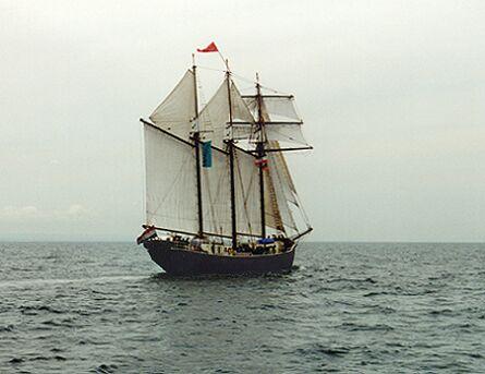 Salomon, Volker Gries, Hanse Sail 1996 / Cutty Sark 1996 , 08/1996