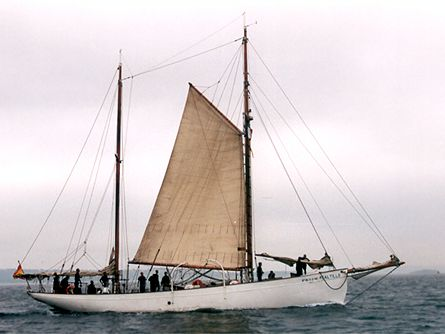 Saltillo, Volker Gries, Sail Brest / Cutty Sark 2002 , 07/2002