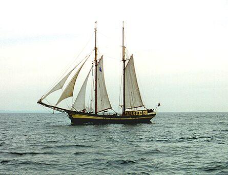 Zuiderzee, Volker Gries, Hanse Sail 1996 / Cutty Sark 1996 , 08/1996