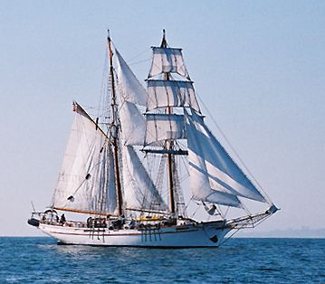 Exy Johnson, Thad Koza (http://www.tallshipsinternational.net/), k.A. / unknown , 2003