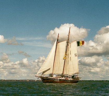 Rupel, Werner Jurkowski, Sail Esbjerg / Cutty Sark 2001 , 08/2001
