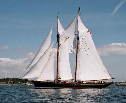 Pacific Grace, Thad Koza (http://www.tallshipsinternational.net/), k.A. / unknown , k.A. / unknown