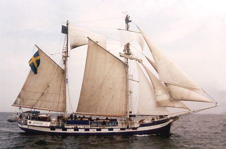 Baltic Beauty, Volker Gries, Hanse Sail Rostock 2002 , 08/2002