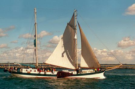 Elegant, Volker Gries, Hanse Sail Rostock 2001 , 08/2001