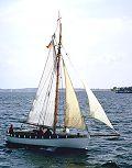Vaar, Volker Gries, Sail Flensburg 2000 / Cutty Sark 2000 , 08/2000
